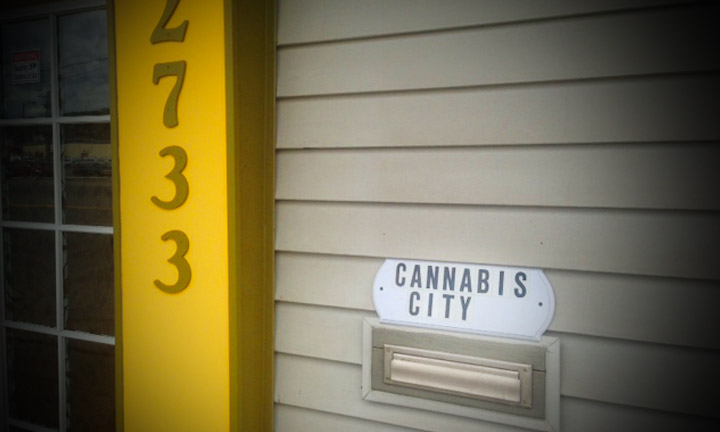 How Long Will It Take Before Cannabis City Sells Out of Marijuana?