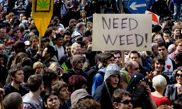 Marijuana Shortage: : 6,541,367 Washingtonians Could be Without Pot?