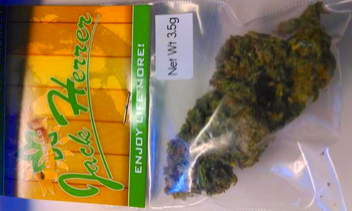 Just In Time For Cannabis Cup:  Monkey Grass Farm and Cannabis City Brings You Jack Herrer