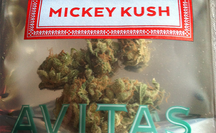 Marijuana Review: Mickey Kush by Avitas Agriculture from Seattle Area Shop Herbal Nation