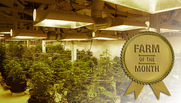 Farm of the Month (November): Avitas Agriculture