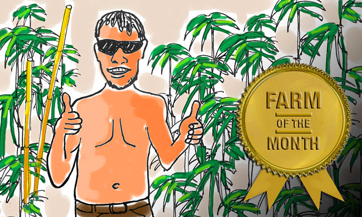 Farm of the Month (October 2014): Bang's Cannabis Company