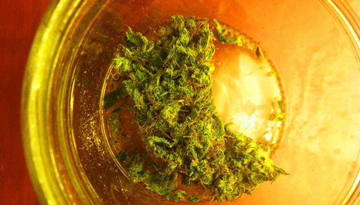 Marijuana Review: Seattle Cough by Dutch Brothers Farms