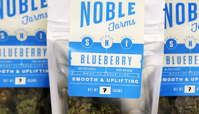 Noble Farms: Tacoma's High-Quality Grow Operation