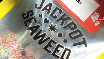 Marijuana Review: Thai Girl by Jackpot Seaweed