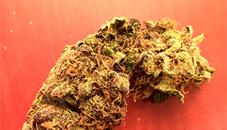 Marijuana Review: Blueberry by Noble Farms